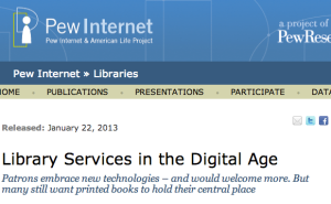 Library Services in the Digital Age screenshot