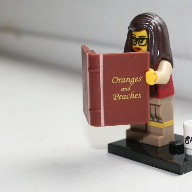 Reel Librarians | The Lego Librarian in action