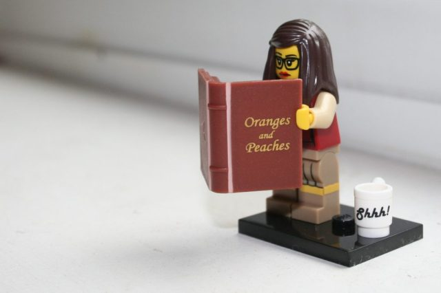 The Lego Librarian in action