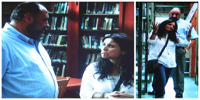 Reel Librarians  |  Screenshots from 'Enough Said'