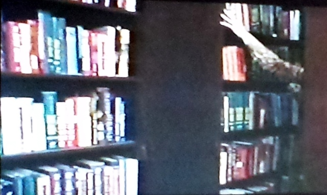 Reel Librarians  |  Screenshot from 'Scream Blacula Scream' (1973)