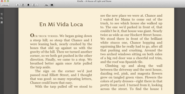 Reel Librarians  |  Screenshot of e-book version of 'A House of Light & Stone'
