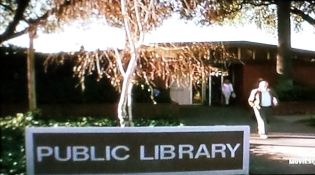 Reel Librarians | Public library in 'Follow the Stars Home' (TV, 2001)
