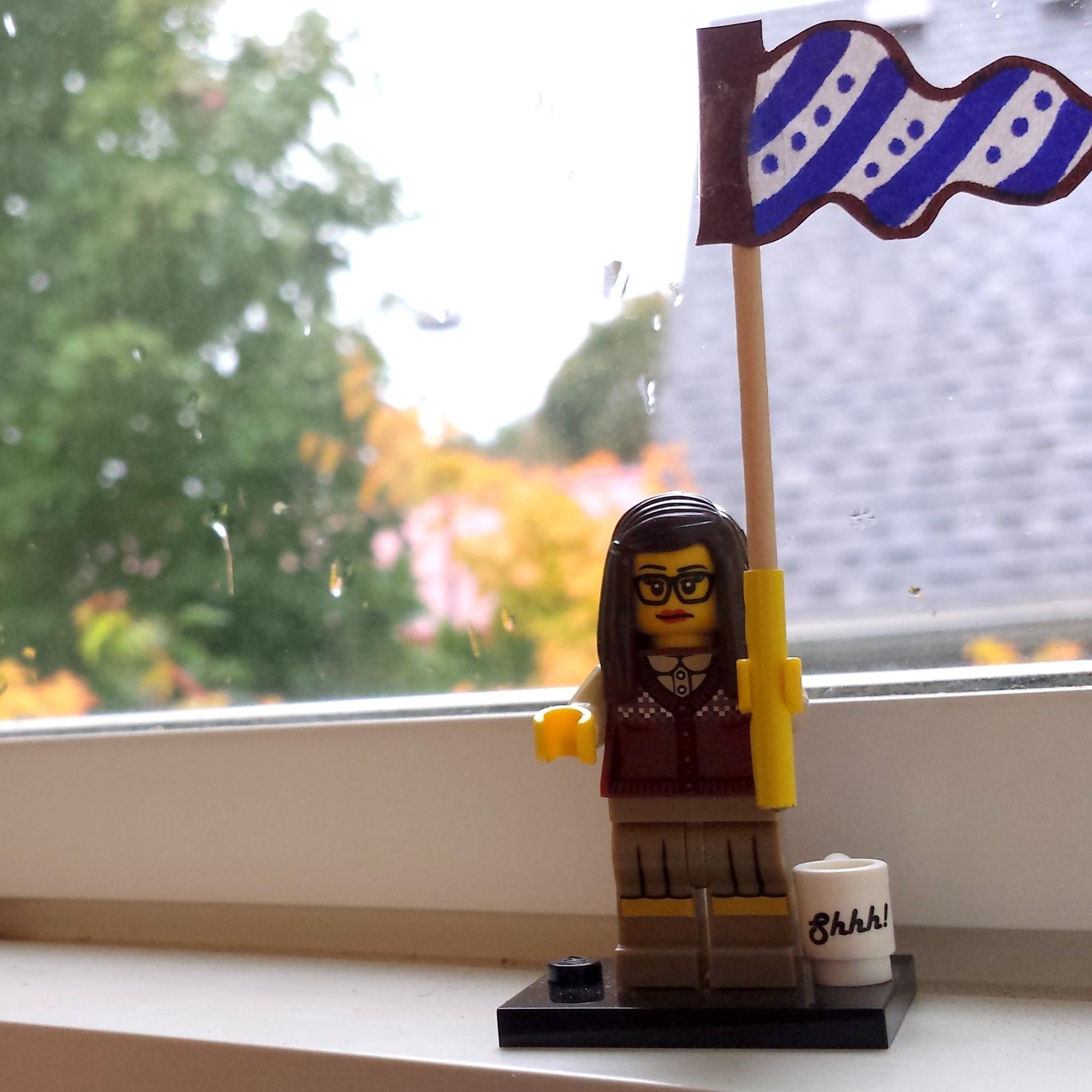 Reel Librarians | Lego Librarian