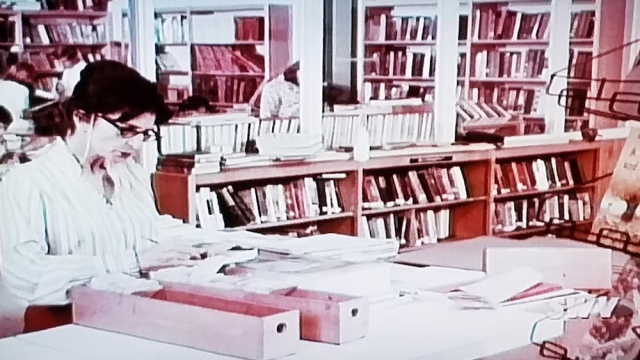 The school librarian goes back to filing cards in Teenage Mother (1967)