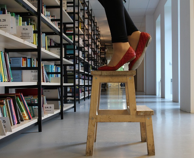 """Library ladder"" by klimkin is licensed under a CC0 public domain license"